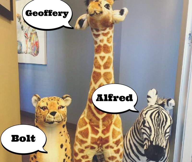 HELLO, MY NAME IS: BOLT, GEOFFERY, AND ALFRED!